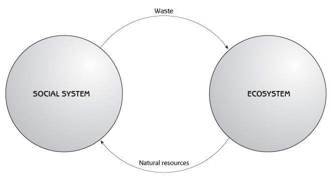 Population ecology case study